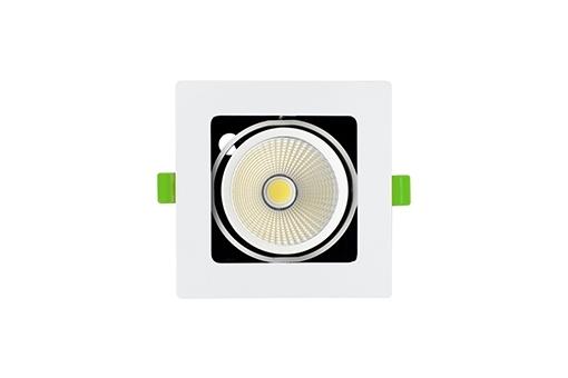 ĐÈN LED SPOTLIGHT ĐƠN 10W (GL -1*10-V)