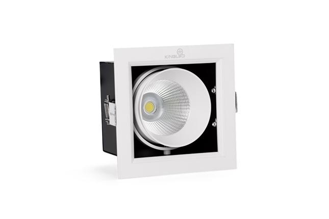 ĐÈN LED SPOTLIGHT ĐƠN 10W (GL-1*10-V120)