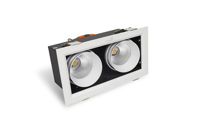 ĐÈN LED SPOTLIGHT ĐÔI 20W (GL-2*10-V227)